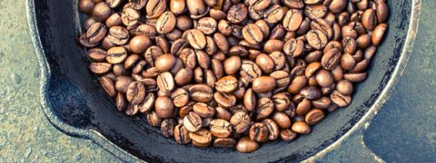 The World of Coffee: a Day in a Roaster